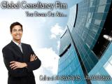 Best Business and Investment Consultant in India